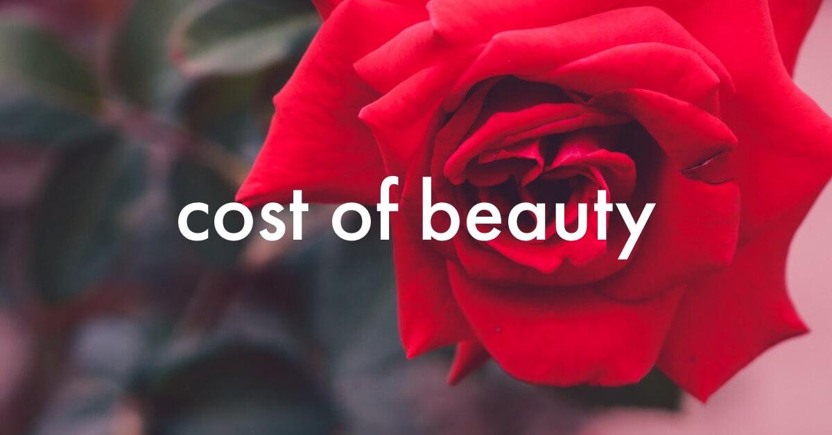 美にかけるお金は人生の固定費!アラサー美容は思い切りが大事-5